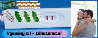 Vysněný cíl - těhotenství